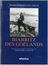 Biarritz des goélands